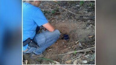 Mulher é presa suspeita de matar e enterrar o filho recém-nascido, em Niquelândia - Jovem de 20 anos confessou o crime. Ela contou à polícia que escondeu a gravidez da família e, ao dar à luz, embrulhou a criança e a colocou em um baú.