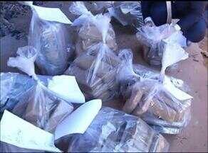 Mais de 300 kg de drogas são incineradas em Araguaína - Mais de 300 kg de drogas são incineradas em Araguaína