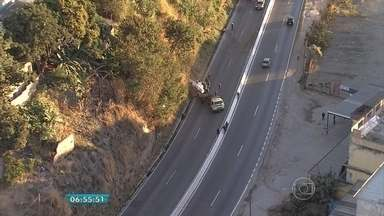 Atropelamento de cavalos interdita BR-381, em Belo Horizonte - Acidente foi na altura do bairro Jardim Vitória, na Região Nordeste.
