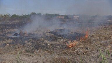 Comitê discute combate às queimadas em RO - Objetivo é discutir estratégias.