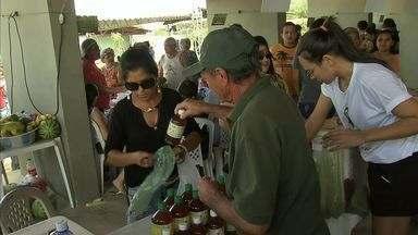 Feira do Maranguape une produtos saudáveis e festa - NE Rural visita as feiras do Ceará.