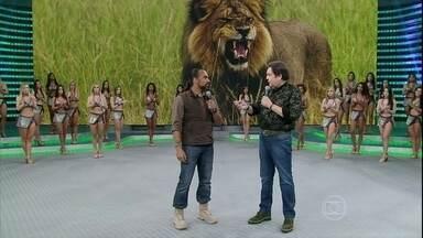 Cristian Dimitrius relembra morte do leão Cecil no Domingão - Cinegrafista da vida selvagem explica a importância do ciclo animal
