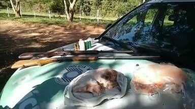 Polícia ambiental de Bauru apreende espingardas, munição e carne de caça em sítio em Avaí - Policiais ambientais de Bauru (SP) apreenderam espingardas, munição e carne de caça em um sítio em Avaí (SP). O caseiro foi detido.