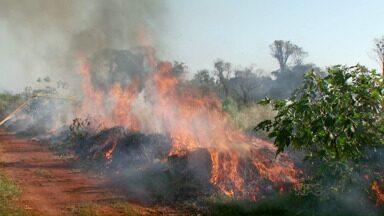Focos de incêndio aumentam nesta época do ano - Situação fica ainda pior por causa do tempo seco e a falta de chuvas