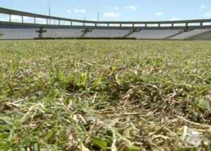 Jogos da Copa Piauí acontecerão no estádio Albertão - Estádio Lindolfo Monteiro continua interditado.