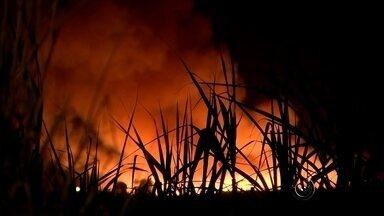 Clima seco contribui para aumento das queimadas e prejudica qualidade do ar - A qualidade do ar nessa época do ano não é boa devido ao clima seco na região noroeste e as queimadas contribuem para piora do ar. Nesta segunda-feira (10) a umidade do ar estava em torno de 30% no noroeste paulista. A queima da palha da cana está proibida de 1º de junho a 30 de novembro das 6h ás 21h.