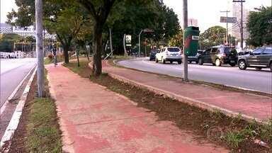 Problemas de estrutura dificultam uso das ciclovias na capital - A prefeitura está investindo nas pistas só para bicicletas. A quantidade de quilômetros cresceu muito na capital. Mas, problemas como falta de sinalização e buracos prejudicam o uso das bikes.