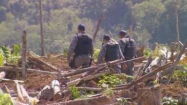 Polícia faz operação para desocupar área invadida em estrada no AM - Área ocupada fica no Ramal - estrada vicinal - da Cachoeira do Leão.