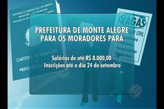 Confira as vagas de concurso do Bom Dia Pará desta quarta-feira (19) - Há certames para nível médio e superior.