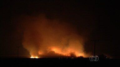 Queimada na BR-060 é controlada antes de atingir usina de álcool, em Goiás - Chamas chegaram até a área da indústria, mas foram contidas antes de atingir tanques de combustível.