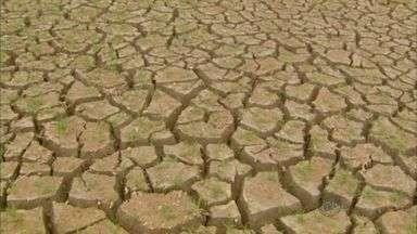 Pescadores e comerciantes acumulam prejuízo por causa da seca do Rio Grande, no Sul Minas - Pescadores e comerciantes acumulam prejuízo por causa da seca do Rio Grande, no Sul Minas