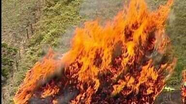 Incêndio em mata nativa de Marilândia já atinge 20 propriedades, no ES - Incêndio ainda não havia sido controlado na noite desta terça-feira (8).