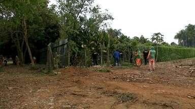 Fiscais fazem nova derrubada de cercas e grades no Lago Sul - Fiscais da Agefis derrubaram cercas e grades no Conjunto Sete da Península dos Ministros. Equipes de limpeza também começaram o trabalho de retirada do material.
