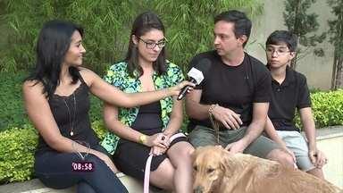 Conheça um diferente serviço de hospedagem de cães - Pessoas oferecem suas casas para receber animais durante a viagem dos donos