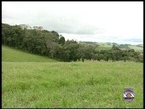 Justiça Federal decide contra a demarcação de reserva indígena - Área rural de trezentos agricultores seria destinada a índios.