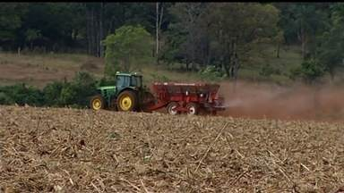 Plantio da soja deve ser de 3 milhões de hectares, em Goiás - Produtores já têm altas expectativas para a safra. O plantio começa em outubro.