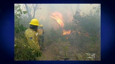 Reserva Arariboia, no Maranhão, é alvo de ataque - O Bom Dia Mirante mostra o incêndio na reserva Arariboia, no Maranhão. O repórter Marcial Lima tem informações sobre esse ataque.