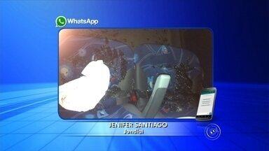 Pedra é atirada em vidro de ônibus e passageiro fica ferido em Jundiaí - Os passageiros de um ônibus que seguia de Jundiaí (SP) à Barra Funda, em São Paulo (SP) levaram um susto na noite de terça-feira (22) depois que o veículo foi atingido por uma pedrada, na Rodovia dos Bandeirantes. O vidro do ônibus estilhaçou e atingiu a cabeça de um homem que estava no banco. A polícia suspeita que o ataque tenta sido realizado por assaltantes.