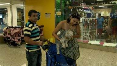 Mais estabelecimentos cearenses passam a aceitar animais - Confira shoppings e lojas que aceitam passeio de animais.