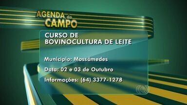 Confira os eventos na área rural desta semana na Agenda do Campo - Há cursos de manejo de pastagens e de bovinocultura.