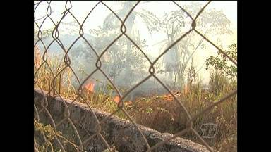 Terreno de universidade pega fogo em Santarém - Moradores não sabem se o incêndio foi criminoso e acreditam que isso aconteceu devido a altas temperaturas.