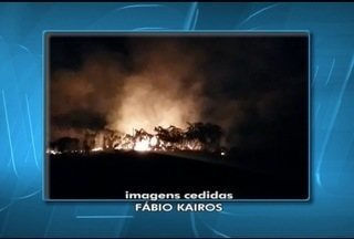 Incêndio atinge mata às margens do Rio Verde, em Jaíba - PM diz que há indícios de que o incêndio tenha sido criminoso.