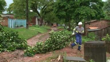 Chuva derruba árvores e deixa quatro mil casas sem energia em Umuarama - Técnicos da Copel estão trabalhando desde o começo da tarde, mas ainda não há um prazo para a energia voltar ao normal.