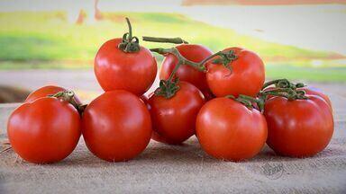 'Prato Fácil' ensina receita de compota de tomate neste sábado (10) - Fernando Kassab mostra combinação para apreciar neste fim de semana.