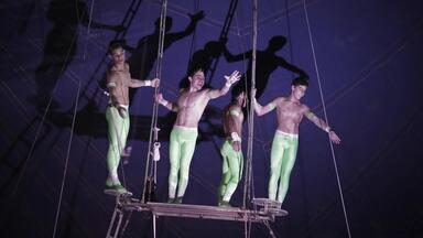 Respeitável Público - Profissionais Do Circo