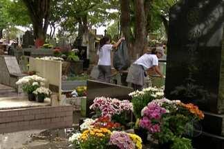 Mogi das Cruzes realiza ações contra a dengue nos cemitérios após Dia de Finados - O ovo de um mosquito da dengue pode ficar intacto por até 450 dias.