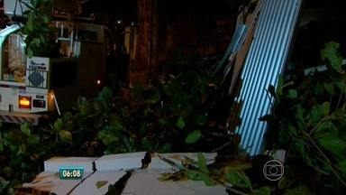 Árvore cai e derruba portão no bairro das Graças, no Recife - Moradores já haviam feito pedido de poda.