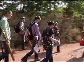 Pesquisadores realizam levantamento dos animais e plantas em Gurupi - Pesquisadores realizam levantamento dos animais e plantas em Gurupi