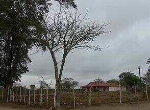 Confira imagens do tempo em Caruaru - Registro foi feito na zona rural do município.