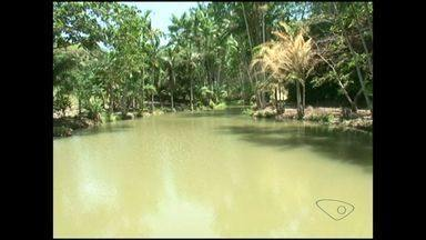 Morador de Itapemirim cria reserva natural, no Sul do ES - Didinho tinha o sonho de respirar ar puro.