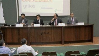 Soja deve ser responsável por quase metade da produção de grãos - Segundo a Conab, o crescimento na produção de grãos deve ser de 2% em relação à safra 2014/2015.
