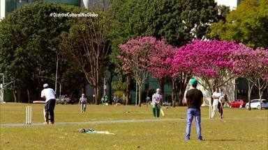 A prática de críquete que reúne pessoas vindas de diferentes lugares do mundo - A prática de críquete que reúne pessoas vindas de diferentes lugares do mundo