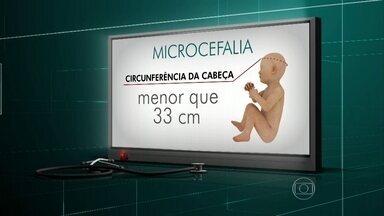 Estado da Paraíba teve 21 casos de microcefalia registrados este ano - Infectologista Edimilson Migowski conversa com Tiago Leifert e explica os sintomas da doença
