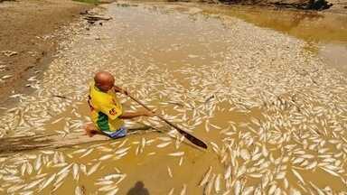 Famílias enfrentam dificuldades após vazante no interior do AM - Em Manaquiri, população está ficando sem comida e água potável.