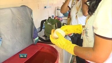 Focos do Aedes aegypti também podem surgir em praças públicas - Veja como o trabalho de combate ao mosquito vem sendo feito no Morro da Conceição, no Recife, e no Cabo de Santo Agostinho.