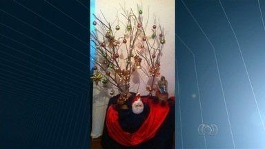 Telespectadores enviam fotos da decoração de Natal das próprias casas - No clima das festas de fim de ano, várias pessoas enviaram registros das árvores e presépio de suas casas.