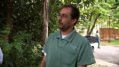 Corregedoria investiga curso pago realizado dentro do Zoológico de Sorocaba - A corregedoria da Prefeitura de Sorocaba (SP) investiga um curso pago que está sendo realizado dentro do zoológico da cidade.