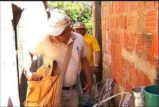 População precisa participar efetivamente no combate ao mosquito da dengue - Veja como contribuir.