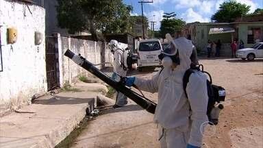 Fumacê é usado em ruas de Paulista no combate ao Aedes aegypti - Primeiro bairro com o serviço foi Engenho Maranguape; nele, 70 pessoas adoeceram de problemas relacionados ao Aedes.