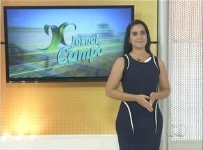 Confira os destaques do Jornal do Campo deste domingo (13) - Confira os destaques do Jornal do Campo deste domingo (13)
