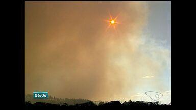 Fogo se alastra por mata e atinge Reserva de Sooretama, no ES - Incêndio começou por volta das 12h deste domingo (20).