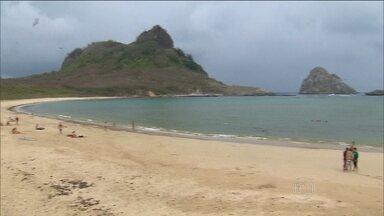 Praia onde tubarão mordeu turista é liberada em Fernando de Noronha - Agora, os banhos na Praia do Sueste só podem ser entre as 10h e as 15g. Mergulhos precisam ser acompanhados por um condutor autorizado.