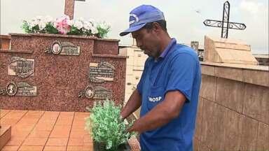 Cemitérios escondem criadouros do mosquito transmissor da dengue - A orientação é para que os responsáveis pelos túmulos também façam a limpeza correta e frequente.