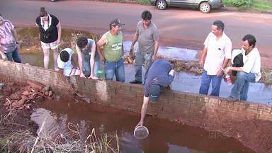Moradores de Maringá cavam buraco em terreno e encontram água - Segundo a Sanepar, a água encontrada não é potável.