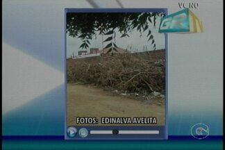 Acúmulo de lixo continua levando riscos a moradores do bairro Rio Claro, em Petrolina - A prefeitura ficou de fazer a limpeza do local.