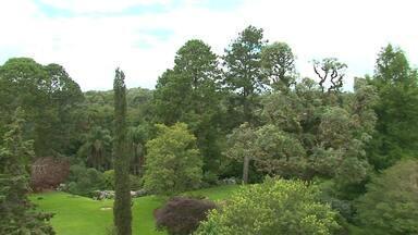 De folga pela região: conheça as belezas do Jardim Botânico de Faxinal do Céu - O quadro vai ao ar todas as sextas-feiras. A ideia é trazer opções de passeios na região.